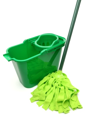 Green cleaning in Wesley Chapel NC by CKS Cleaning Services, Inc.