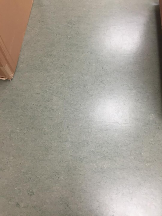 Floor Care at Bartlett Research Lab Charlotte, NC