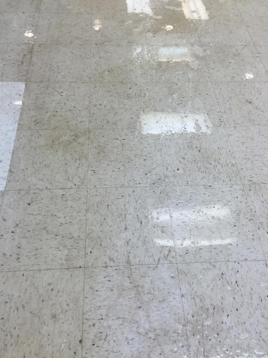 Floor Care in Charlotte, NC